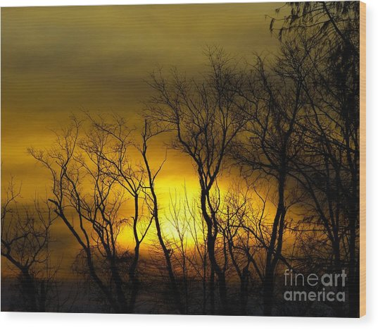 Sunset Over Our Free Land Wood Print