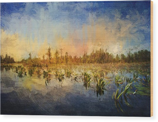 Sunset Over The Okefenokee Wood Print