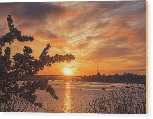Sunset Over The Salem Beverly Bridge From The Salem Willows Salem Ma Wood Print