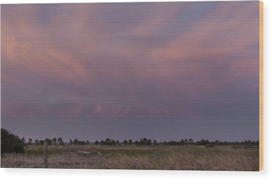 Sunset Over The Wetlands Wood Print