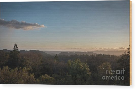 Sunset Over Top Of Dense Forest Wood Print