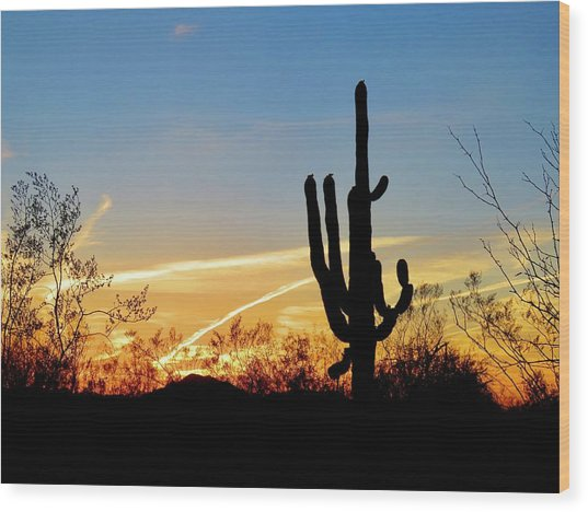Sunset Saguaro In The Spring Wood Print