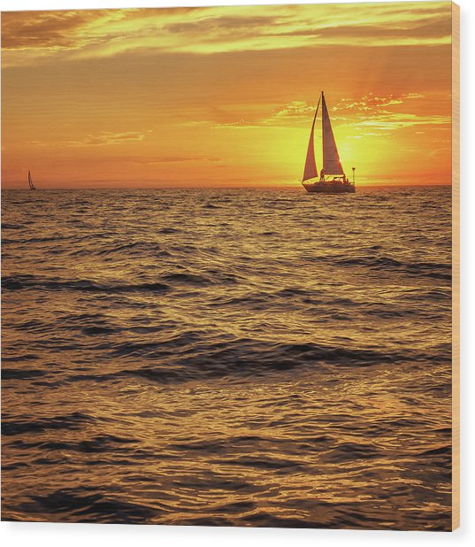 Sunset Sailing Wood Print by Steve Spiliotopoulos