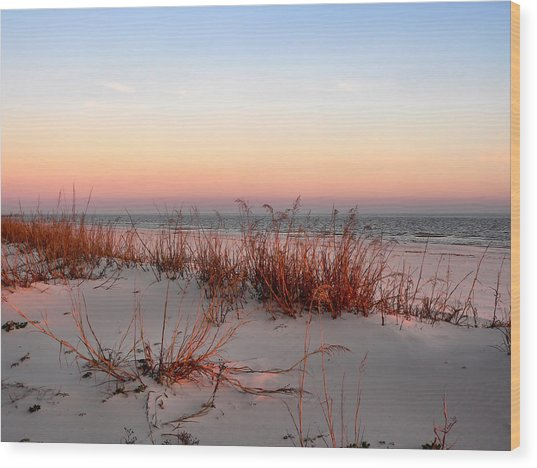 Sunset Sea Oats  Wood Print