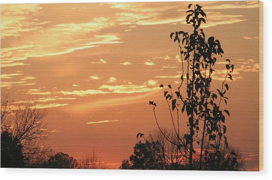 Sunset Series No. 1 Wood Print by Christina Martinez