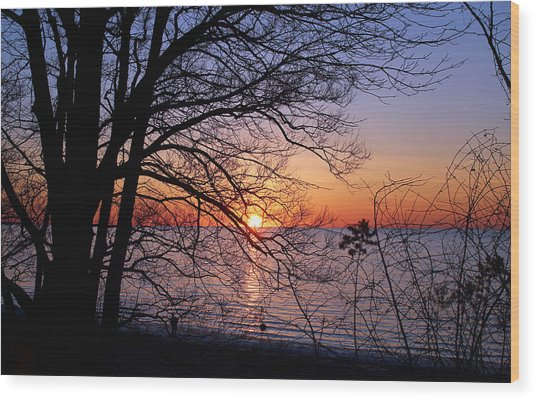 Sunset Silhouette 2 Wood Print by Peter Chilelli