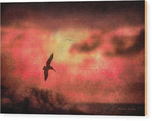 Sunset Soaring II Wood Print