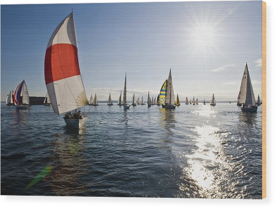 Sunset Spinaker Wood Print by Tom Dowd