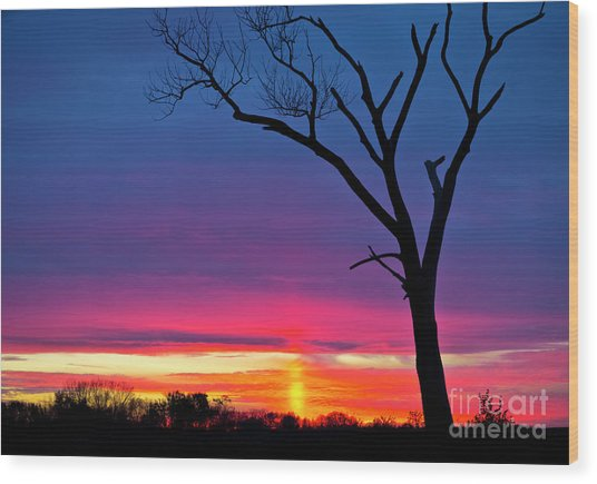 Sunset Sundog  Wood Print