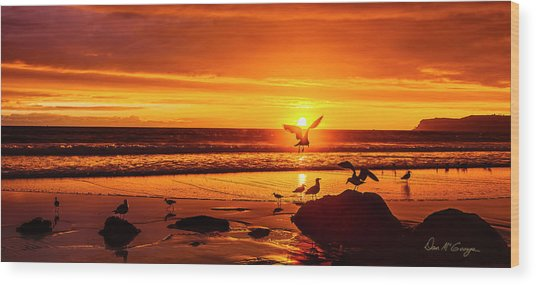 Sunset Surprise Pano Wood Print