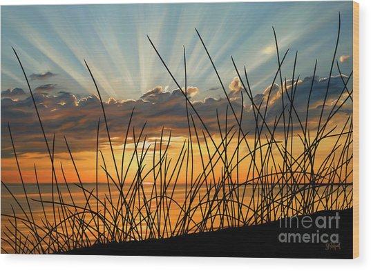 Sunset Thru The Grass Wood Print