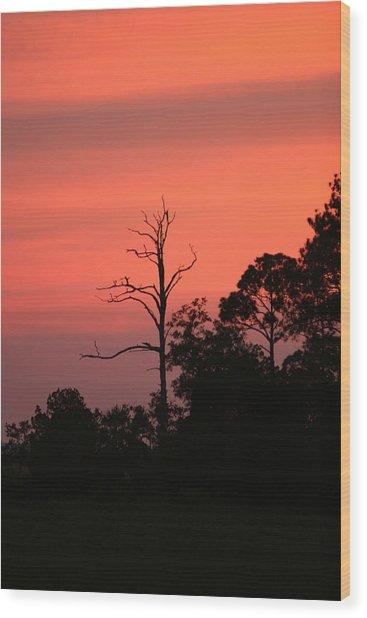 Sunset Wood Print by Walt Reece