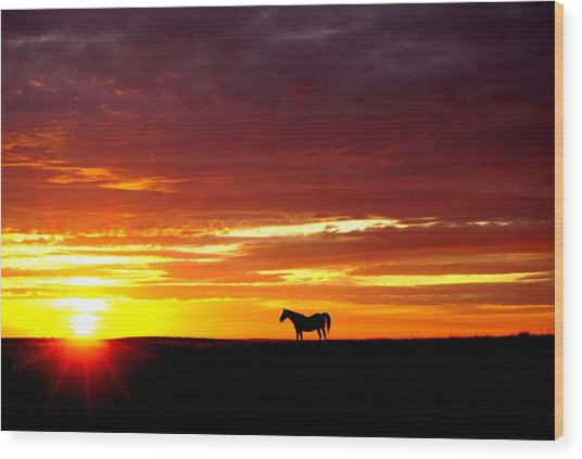 Sunset Watcher Wood Print