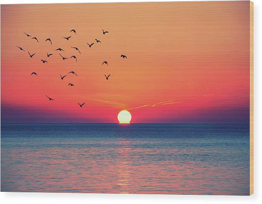 Sunset Wishes Wood Print