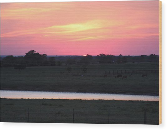 Sunset With Pond Wood Print by Jonathan Kotinek