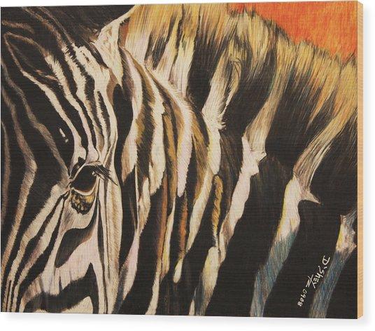 Sunset Zebra Wood Print by Don MacCarthy