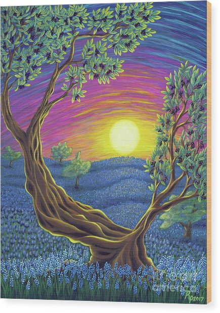 Sunsets Gift Wood Print