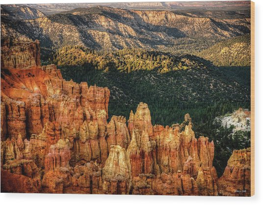 Sunsets In The Canyon Wood Print