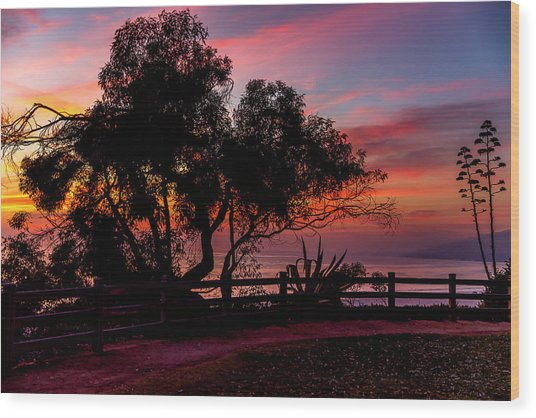 Sunset Silhouettes From Palisades Park Wood Print