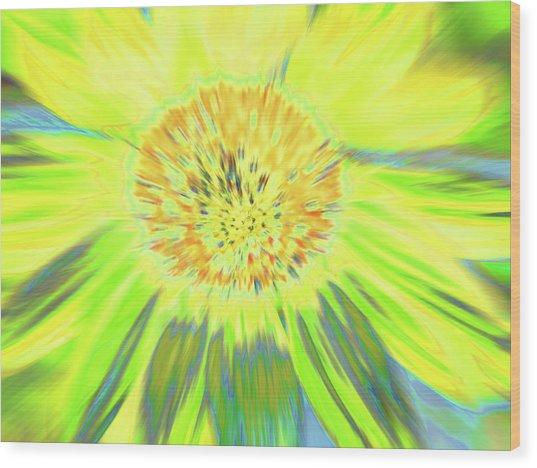 Sunshake Wood Print