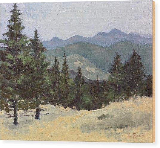 Sunshine Canyon Wood Print