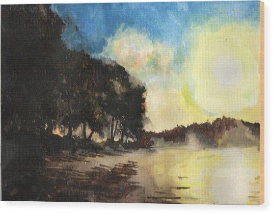 Sunshine Is Fine Wood Print