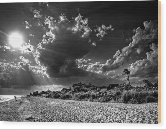 Sunshine On Sanibel Island In Black And White Wood Print