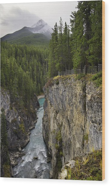Sunwapta Falls Canyon Wood Print