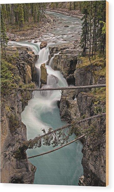 Wood Print featuring the photograph Sunwapta Falls by John Gilbert