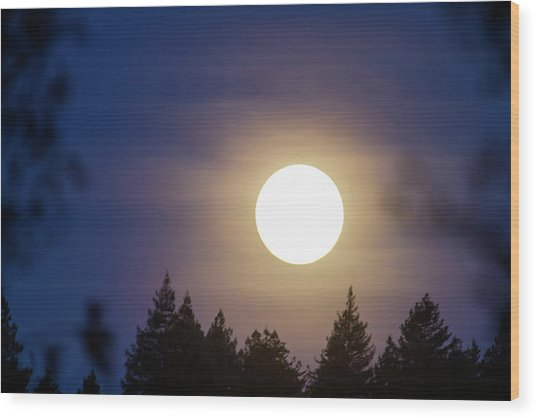 Super Full Moon Wood Print