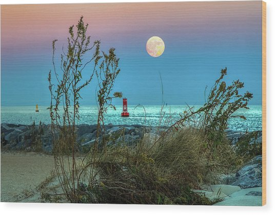 Super Moon 2016 Wood Print