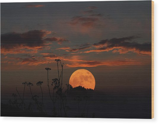 Super Moon And Silhouettes Wood Print