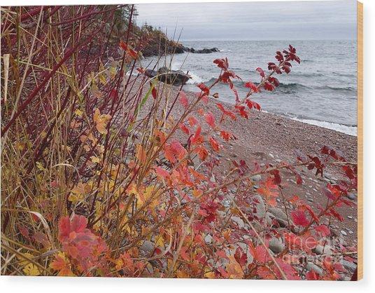 Superior November Color Wood Print