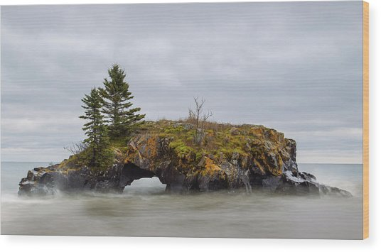 Superior Shores Wood Print