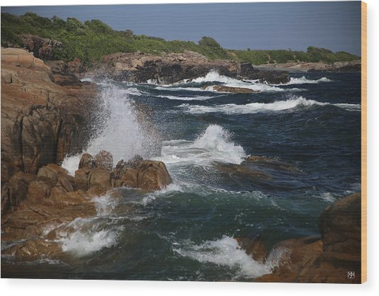 Surf At Biddeford Pool Wood Print