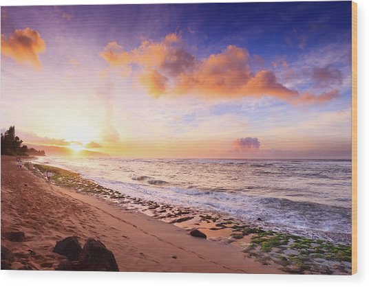Surfer At Sunset Wood Print