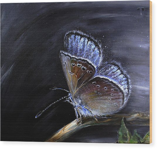 Surreal Common Blue Wood Print by Tanya Byrd