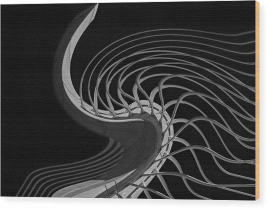 Suspension Of Disbelief Wood Print