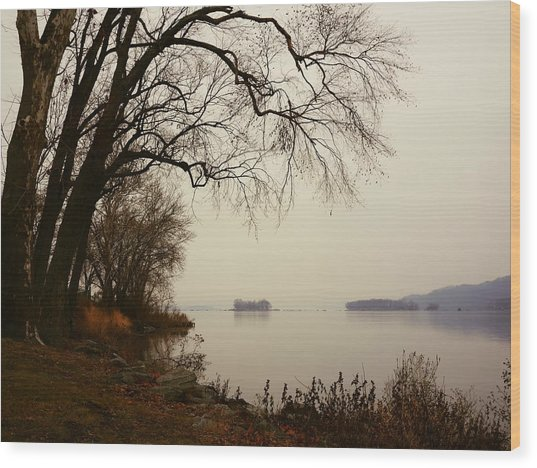 Susquehanna River Near Veterans Memorial Bridge Wood Print