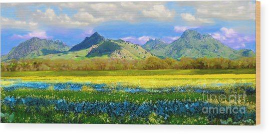 Sutter Buttes In Spring Wood Print