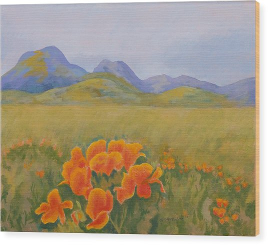 Sutter Buttes With California Poppies Wood Print