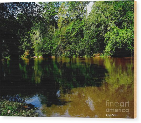 Suwannee River Wood Print by Greg Patzer