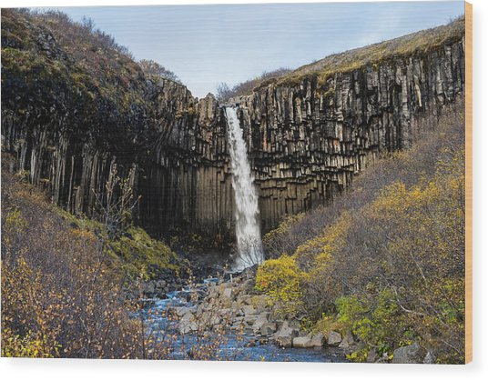 Wood Print featuring the photograph Svartifoss by James Billings