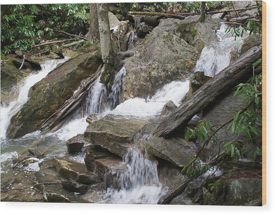 Swallow Falls Wood Print by Heather Green