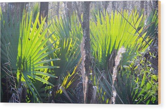 Swamp Art Wood Print