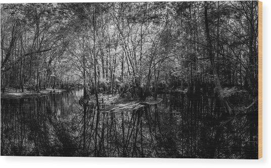 Swamp Island Wood Print