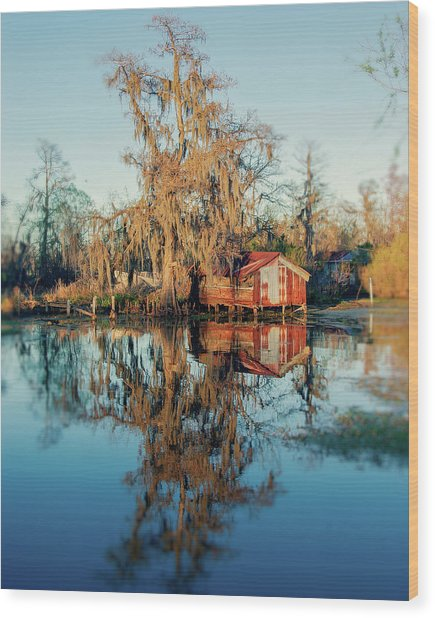Swamp Reflections Wood Print