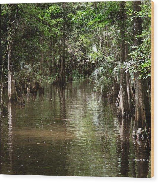 Swamp Road Wood Print
