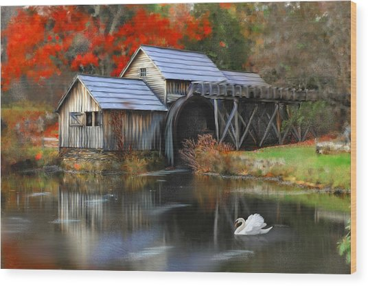 Swan At Mabry Mill Wood Print