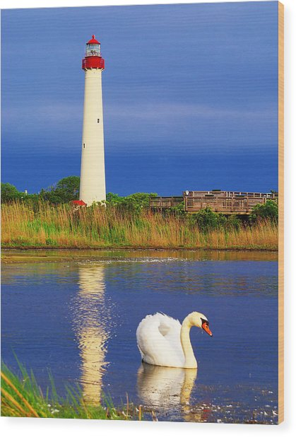 Swan At The Lighthouse Wood Print